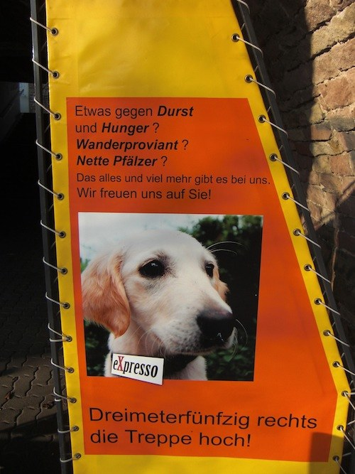 Pfälzer essen Hunde