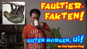 lustige Fakten über Faultiere