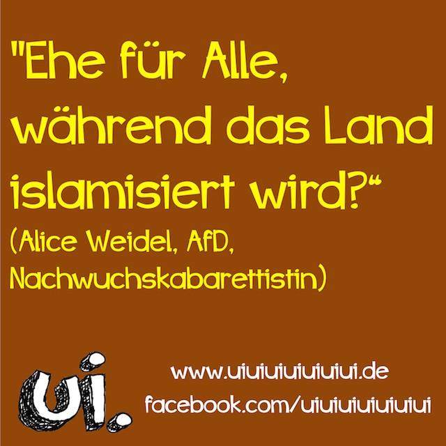 afd alice weidel ehe islamisierung
